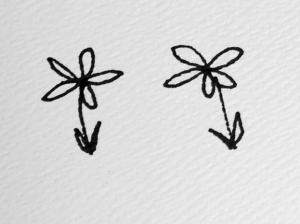 10 petals